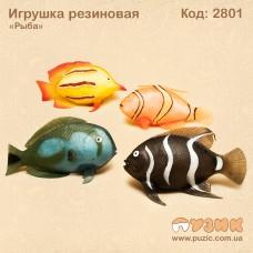 """Игрушка резиновая """"Рыба"""""""