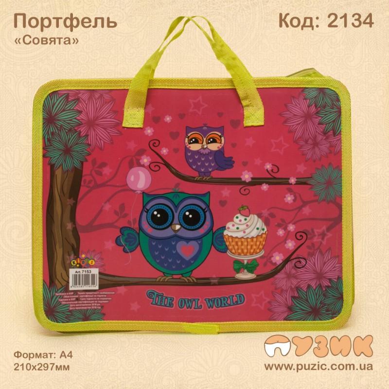 """Папка портфель """"Совята"""""""
